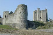 Trim Castle Tours