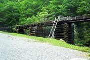 Top 10 Great Smoky Mountains National Park Attractions