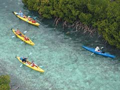 Turks and Caicos Eco Tours