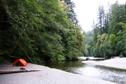 Redwood National Park Camping